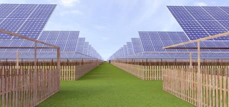 Zonnepark De Bergen in Drimmelen krijgt alsnog groen licht, streep door andere plannen