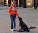 Marianne Krediet zag de onwel geworden man tijdens het uitlaten van haar labrador Bommel.