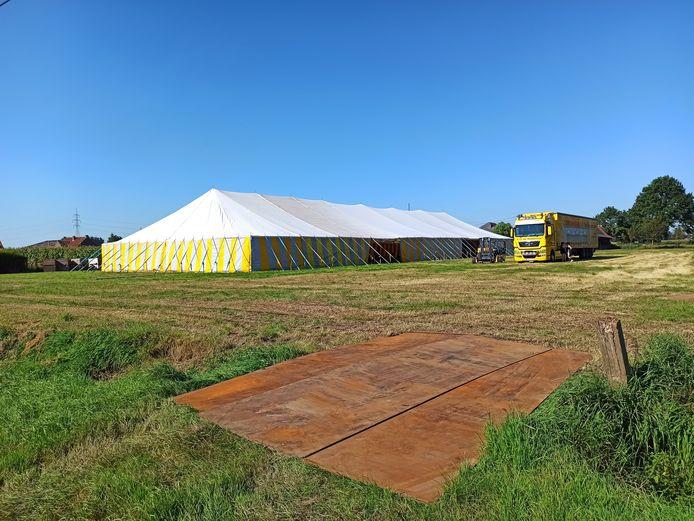 Sunilicious vindt plaats in een grote tent in Hoetsel, Zomergem.