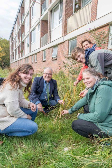 De natuurtuin is na twee jaar al een biodivers pareltje in de stadswijk