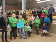 STAPS in Steenwijk kan, als het mag, paarden weer vervoeren naar manege