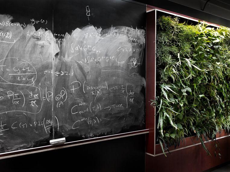 Schoolbord met groen ernaast. Beeld Jos Jansen