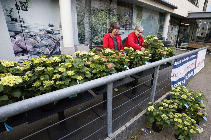 Op zes locaties deelde MCB hortensia's uit aan thuiszorgmedewerkers. Marjolein van de Bilt en Jolanda Maes (r) van Wijkzorg Kempenhof zoeken een hortensia uit.