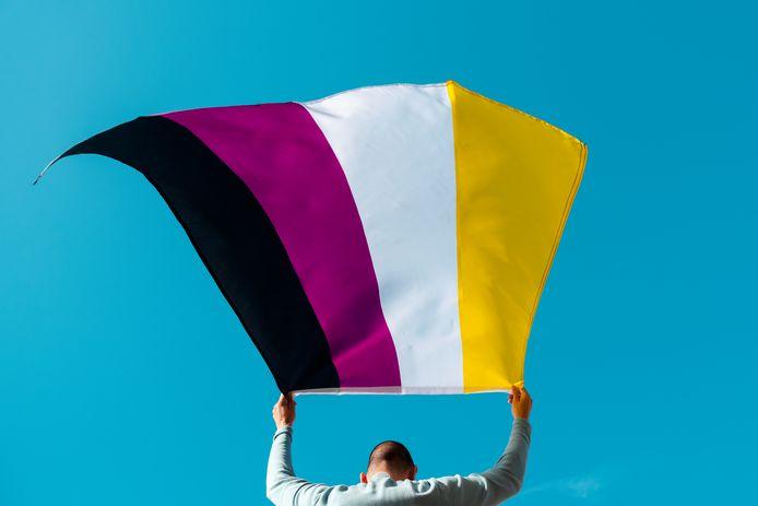 De non-binaire vlag bestaat uit vier strepen: geel, wit, paars en zwart.
