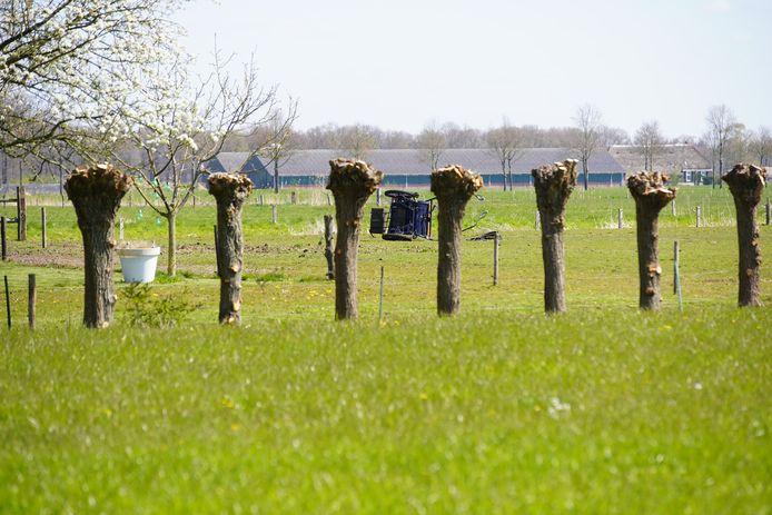 De omgeslagen menwagen in het weiland aan de rand van Schalkhaar.