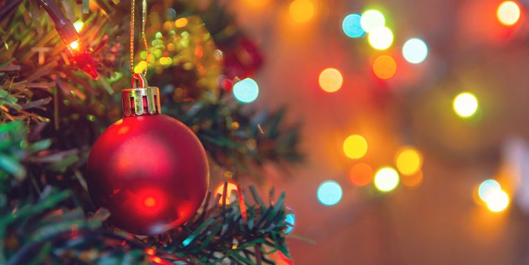 kerstbomen-bners.jpg