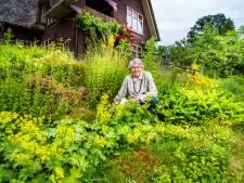 Hof van Eden, midden in Hengelo: op avontuur door de eigenzinnige tuin van Ria Spruit
