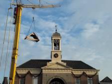 Het dak gaat er (even) af in Harderwijk