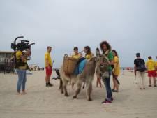 Ezeltje Boets mag niet helpen om het strand bij Domburg schoon te maken