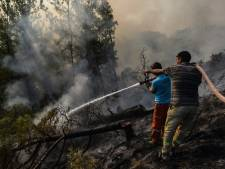 Touristes et résidents locaux évacués pour fuir les incendies en Turquie