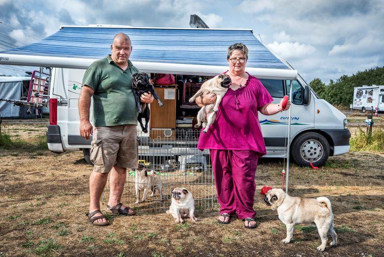 Raffaella Gianturco en Paolo Naples uit Italië doen met een Nederlandse kooiker en drie mopshondjes aan de hondenshow mee. Beeld Raymond Rutting / de Volkskrant