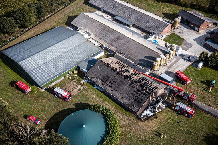 Een luchtfoto gemaakt met een drone van een in 2019 uitgebrande varkensstal. Bij de brand zijn 500 varkens om het leven gekomen.  Beeld ANP