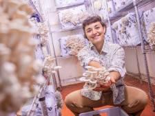 Alessia levert oesterzwammen uit eigen streek: 'Ze moeten zichzelf verkopen'