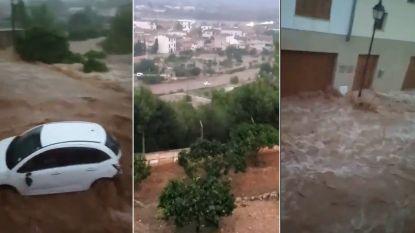 VIDEO. Auto's meegesleurd tijdens zondvloed op Mallorca: minstens acht doden en tien vermisten