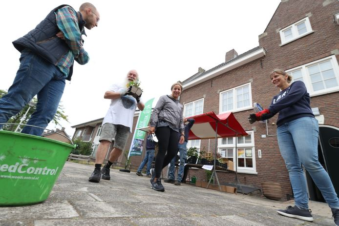 Actie Steenbreek bij buurthuis St. Anna