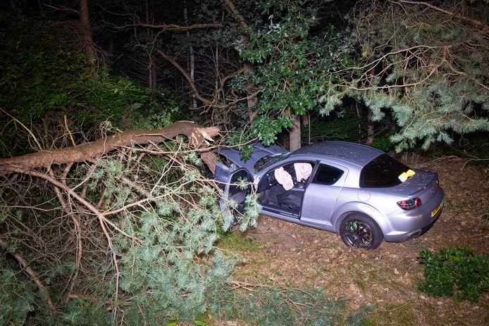 De auto velde een boom. De bestuurder raakte ernstig gewond.