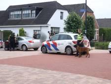 Flink aantal agenten zoekt in Tiel naar verdachte van bedreiging in Maurik, mogelijk vuurwapen in het spel