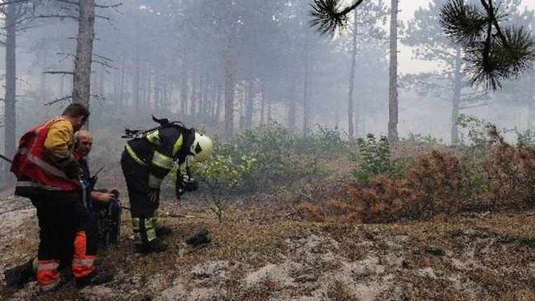 Brandweermannen tijdens een blusactie in augustus van dit jaar, toen 150 hectare duinen in vlammen opging. ( ANP) Beeld