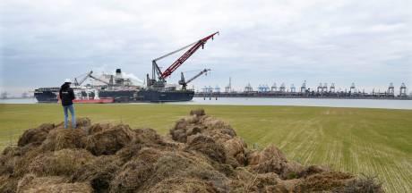 Met dit Japanse foefje gaat de Rotterdamse haven zandverstuivingen te lijf