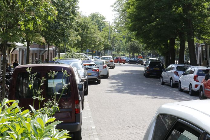 Parkeerdruk in Schiedam-West. Ook in Zuid domineren geparkeerde auto's het straatbeeld.