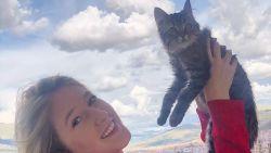 Actie om straatkat Lee van dood te redden: al 20.000 handtekeningen en steun minister