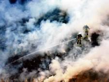 Een bos brandt al snel flink, wat doe je eraan?