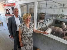 Roois varkensbedrijf werkt intensief samen met hogeschool; 'We moeten jeugd betrokken houden'
