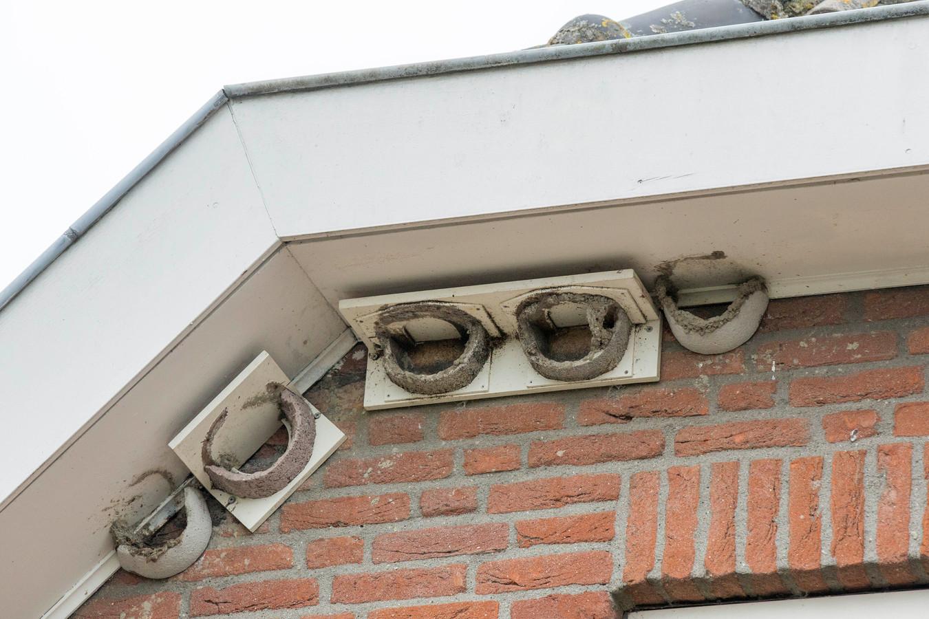 Bij de verbouwing van dit huis in Hoedekenskerke werd nestgelegenheid voor zwaluwen opgehangen om de oude nesten te vervangen.