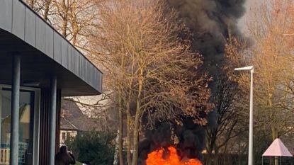 Brandstichting in stadspark van Hamont-Achel