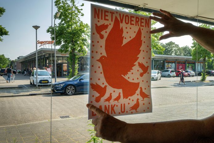 Nederland,  Den Bosch, sommige bewoners klagen over teveel Duiven op de Buitenpepers bij supermarkt de Coop.