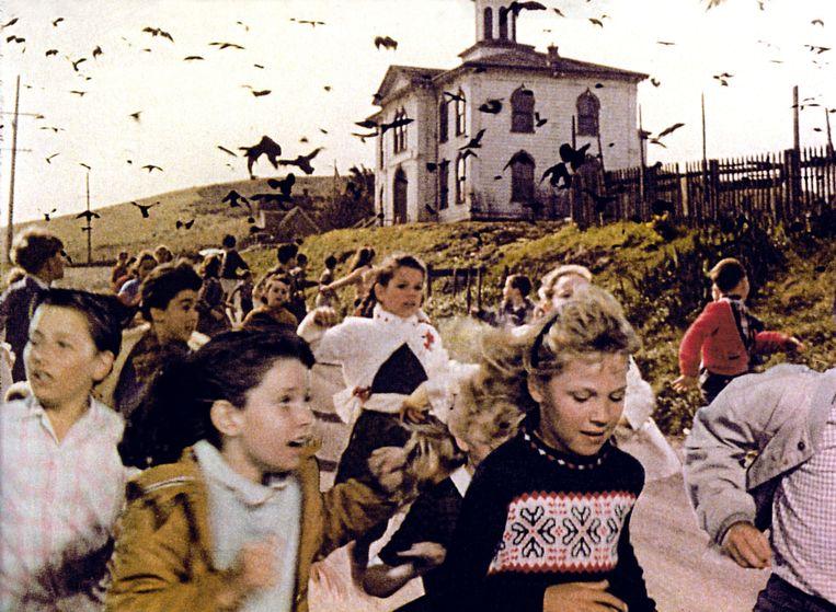 Vogels vallen schoolkinderen aan in The Birds. Linksvoor Veronica Cartwright in het okergele vest. Beeld Alamy