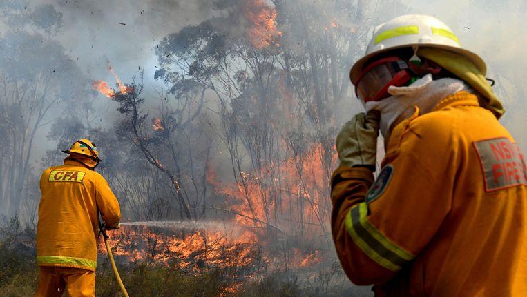 Al meer dan 200 huizen zijn verwoest door de bosbranden die Australië teisteren. Beeld AP