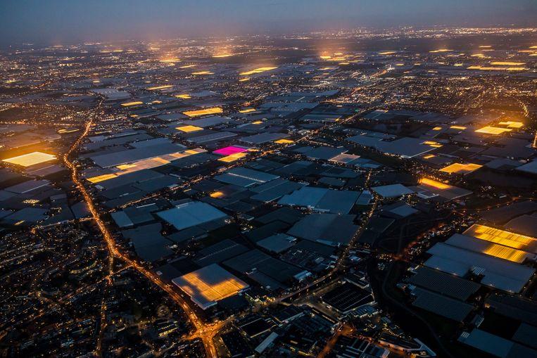 Het dag en nacht verlichte Westland. Beeld Hollandse Hoogte / Thierry Schut Fotografie