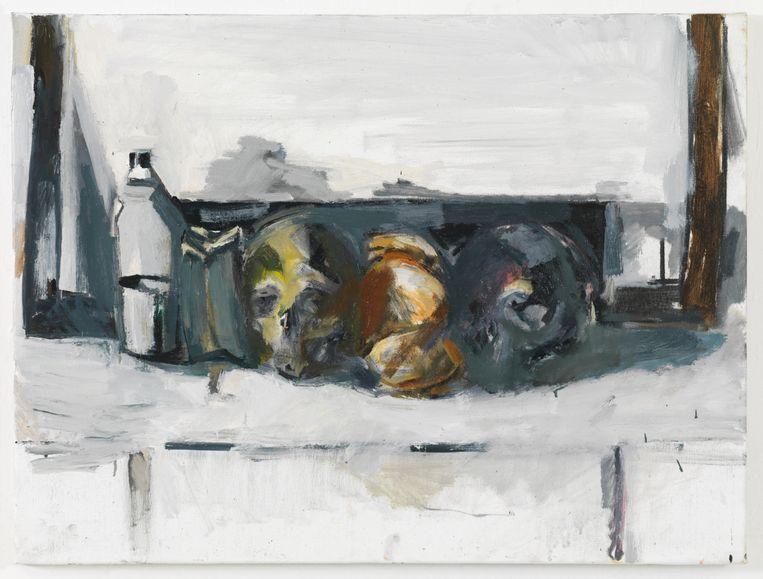 Werk van Vincent Geyskens in M Leuven. Beeld Vincent Geyskens
