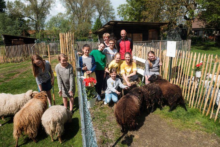 De dieren op de Kinderboerderij in de Altenaschool wordt dagelijks verzorgd door leerlingen.