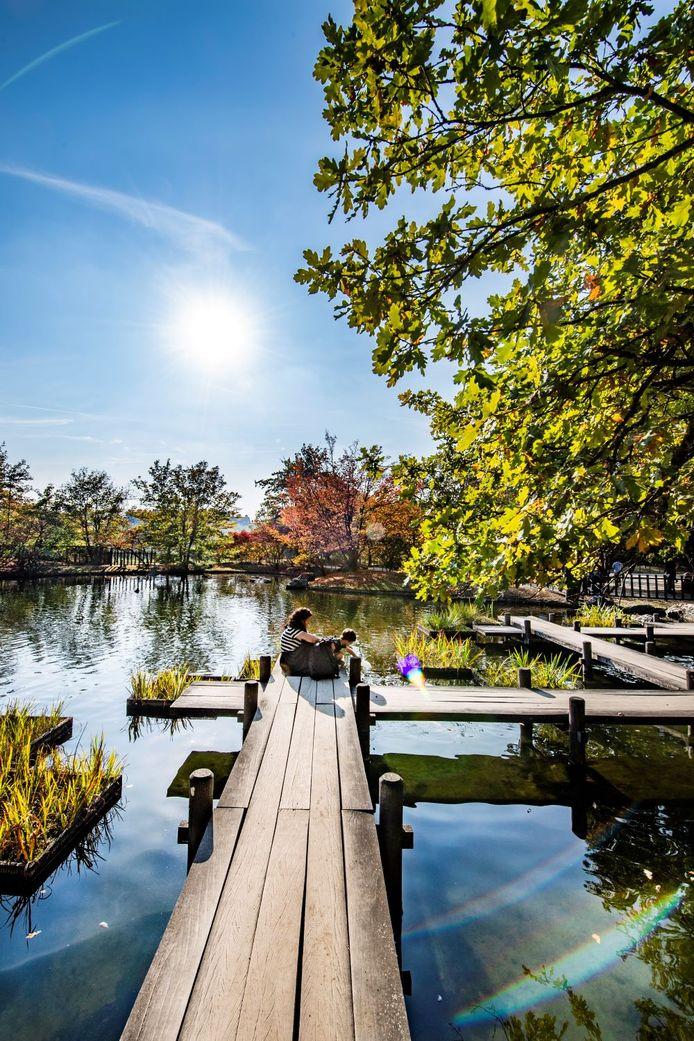 De Japanse Tuin in Hasselt.