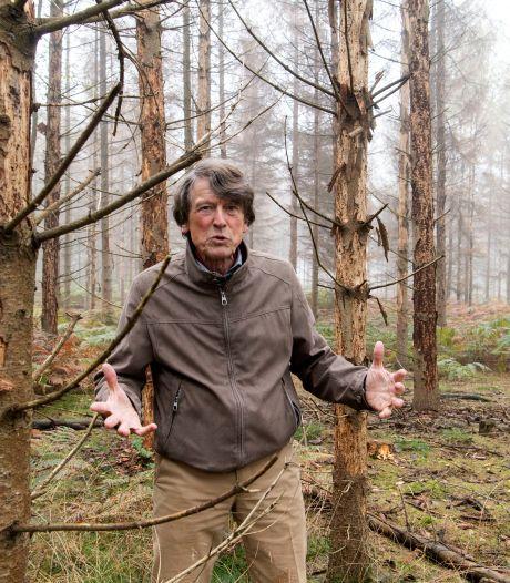 Kwijnende bomen op landgoed Het Lankheet in Haaksbergen: 'Proces is al een hele poos bezig'