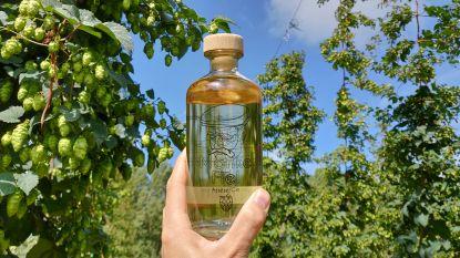 Manke Fiel, een gin uit Asse op basis van lokale hop
