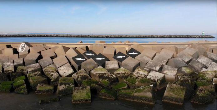 Eerbetoon aan overleden surfers van Johan van Boven Dronevlieger.