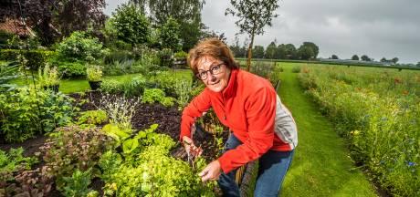Denekampse Ria Bruns laat iedereen meegenieten van al het moois in haar tuin
