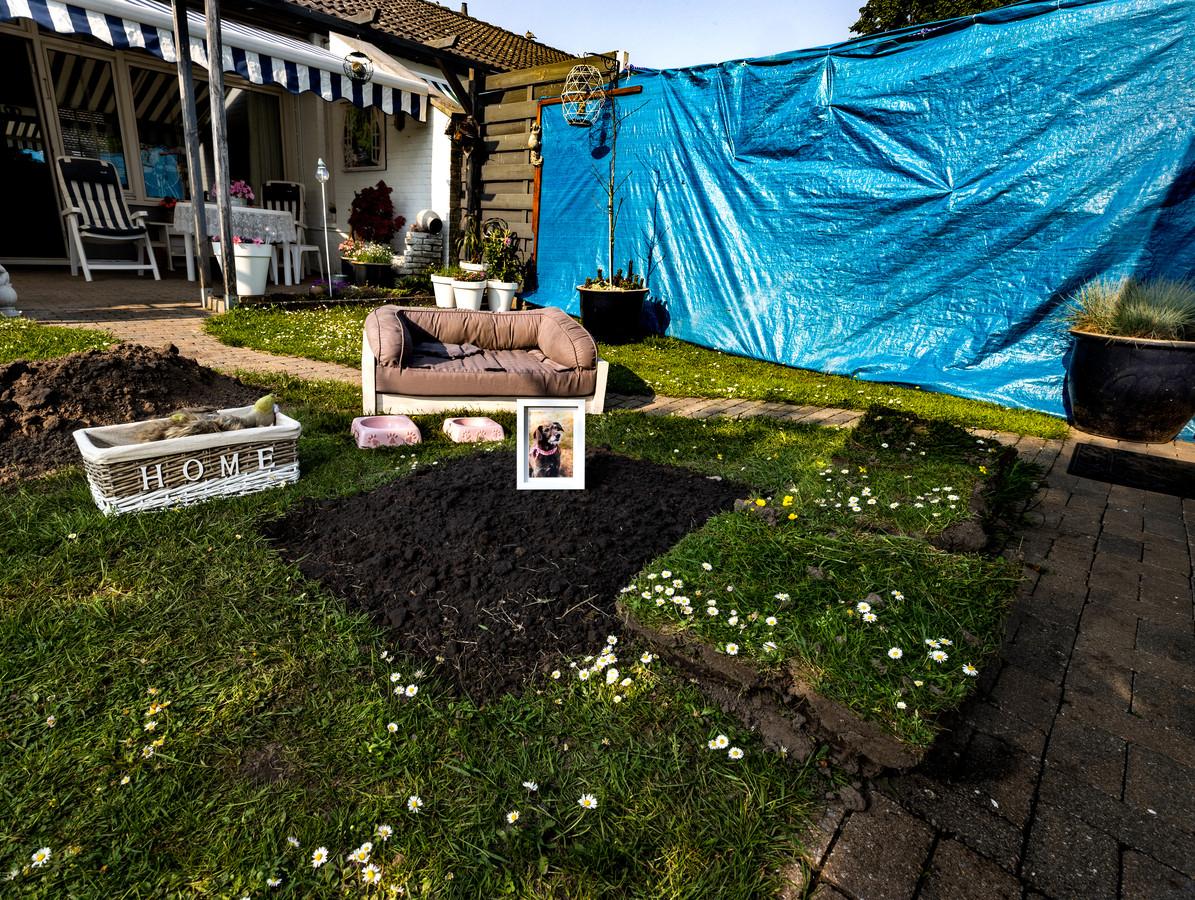 Het hondje van Jan en José Bartels is doodgeschopt door de buurman. Ze hebben een blauw zeil gespannen om het gezamenlijke plantsoen af te schermen.