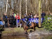 Uitspraak rechter over paardenconflict Schaijk voorkomen