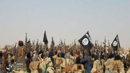 Bijna 90 doden bij aanval door moslimextremisten van Boko Haram in Kameroen