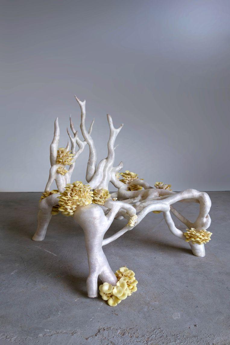 De Mycelium Chair van het Nederlandse ontwerpersduo Klarenbeek & Dros. Beeld rv