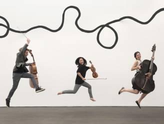 Loco Motive Trio schiet seizoen Klassiek! Beleven in de Westhoek op gang