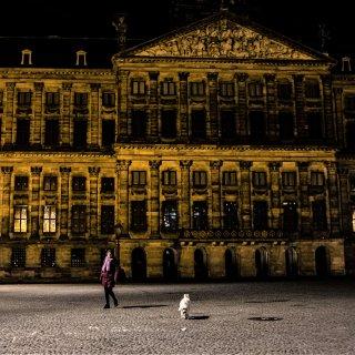 Als bij toverslag zijn de Amsterdamse straten en grachten uitgestorven