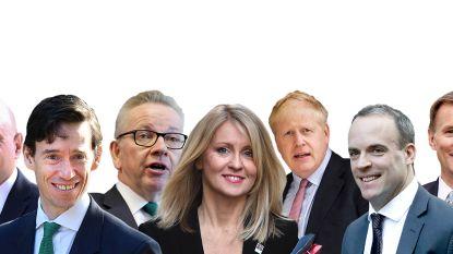 Een premierschap, zeven kandidaten: wie volgt May op?