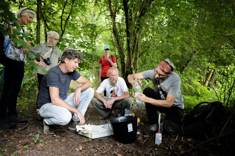 Hoogleraar biodiversiteit Menno Schilthuizen (rechts op de foto) leegt een insectenval in het Amsterdamse Flevopark.