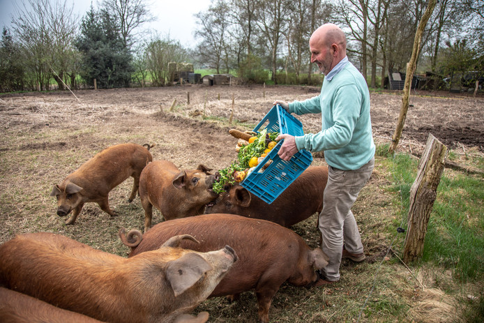 Bert Waterval voert zijn varkens met producten waarvan nog prima een lekkere brunch is te maken.