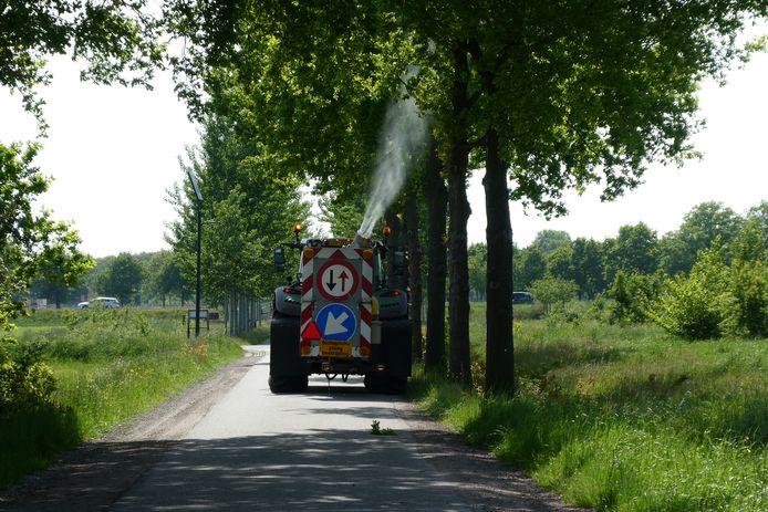 Spuiten tegen de eikenprocessierups. Hier op de Keerdijk in Sint-Michielsgestel.